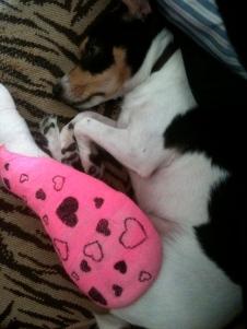 Maddie in splint